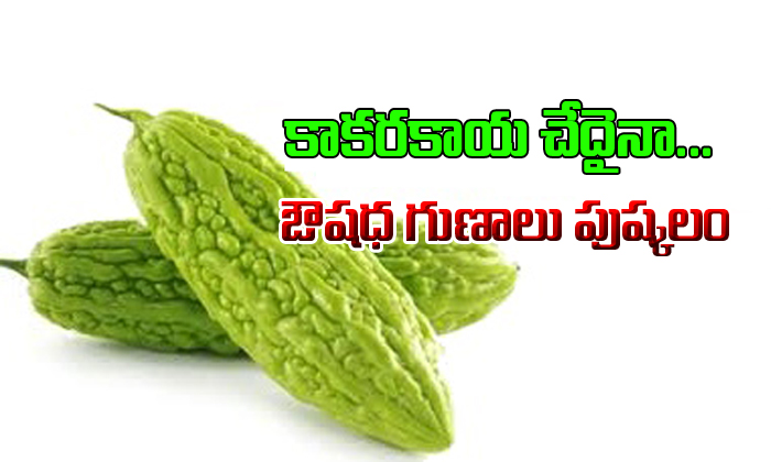 Amazing Benefits Of Bitter Gourd- Telugu
