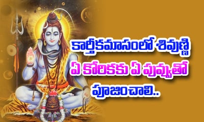 Archana to Shiva With Flowers-Archana To Shiva With Flowers---