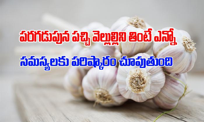 Garlic Health Benefits- Telugu