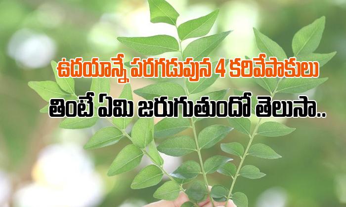 Health Benefits Of Curry Leaves In Telugu- Telugu