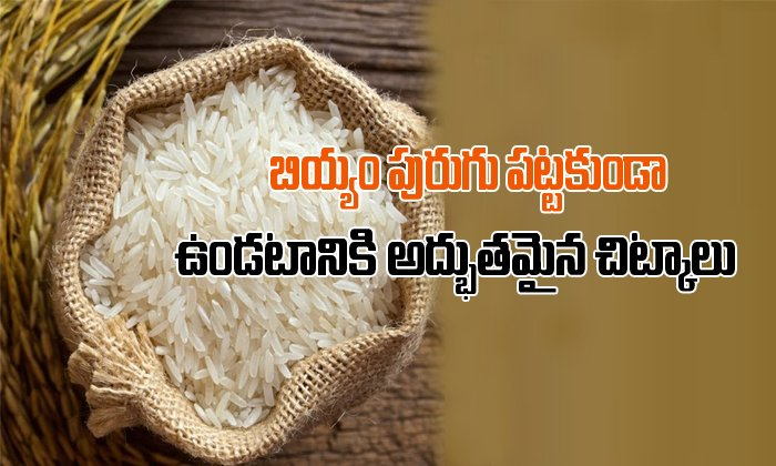 Home Tips To Prevent Worms,insects From Stored Rice- Telugu