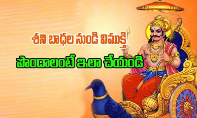Shani Graha Dosha Nivarana In Telugu---