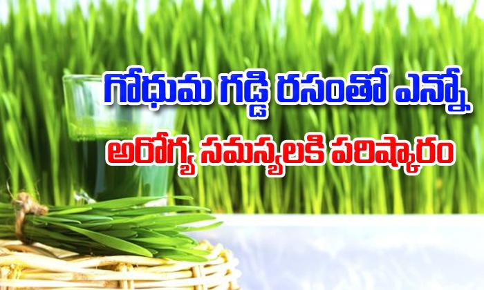 Wheatgrass Health Benefits-