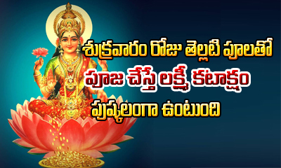 Flowers Offered To Hindu Gods And Goddesses In Pooja---