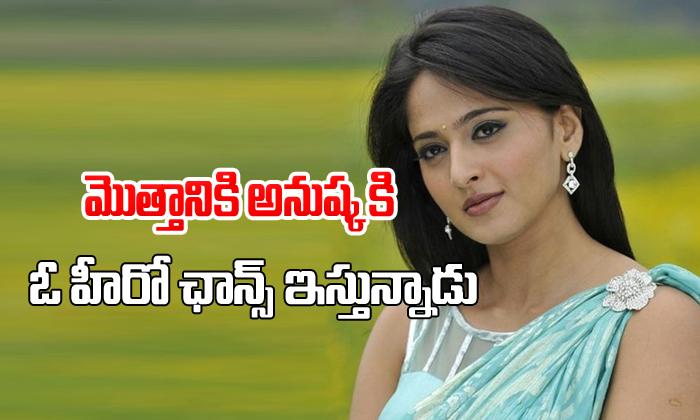Anushka finally gets a film with star hero-