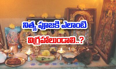 నిత్య పూజకి ఎలాంటి విగ్రహాలుండాలి? how to keep idols in pooja room--