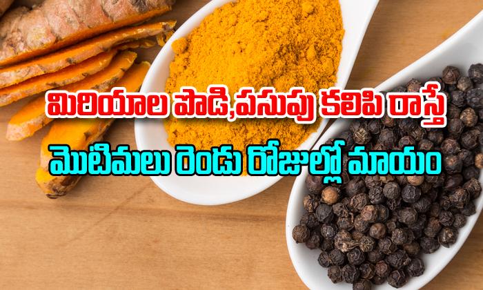 Amazing Health Benefits of Black Pepper and Turmeric-,,Telugu Stop News Com