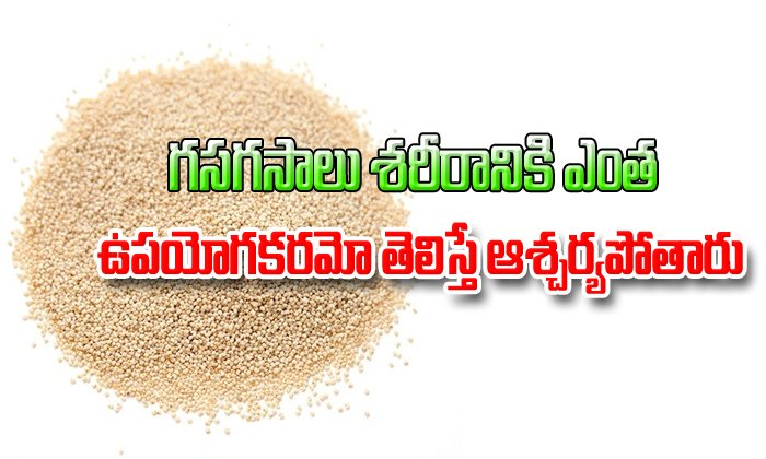 Amazing benefits of poppy seeds that can surprise you-