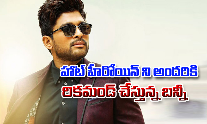 Bunny recommending hot beauty for new projects-