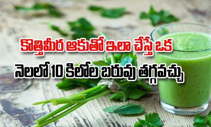 Coriander Leaves Juice For Weight Loss-