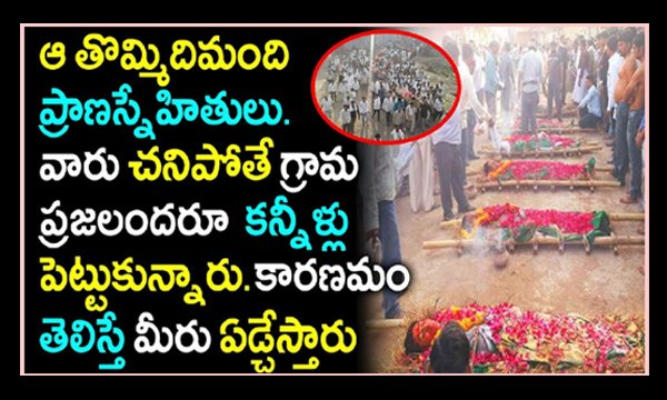 9 Friends In Road Incident In Gujarat-