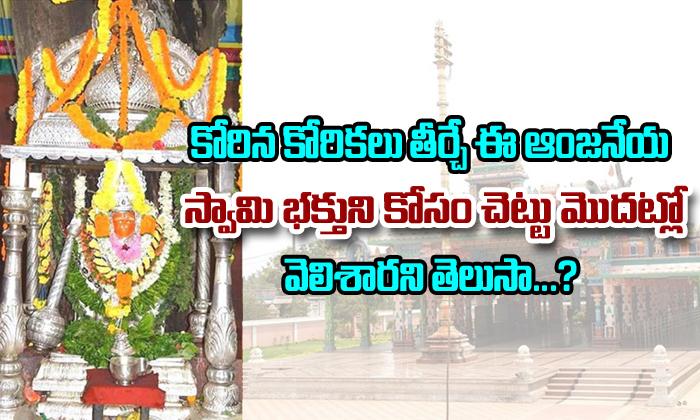History of Maddi Anjaneya Swamy Temple in West Godavari-,