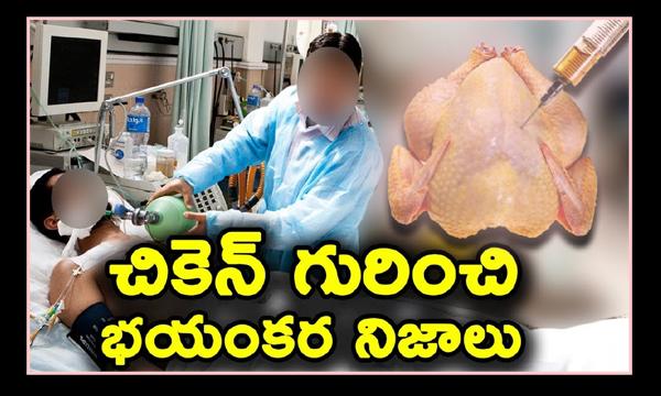 Shocking Facts Behind 'Chicken'-