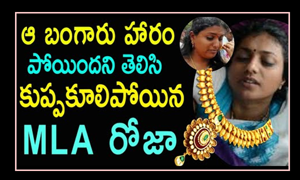 Theft At Roja's House-,