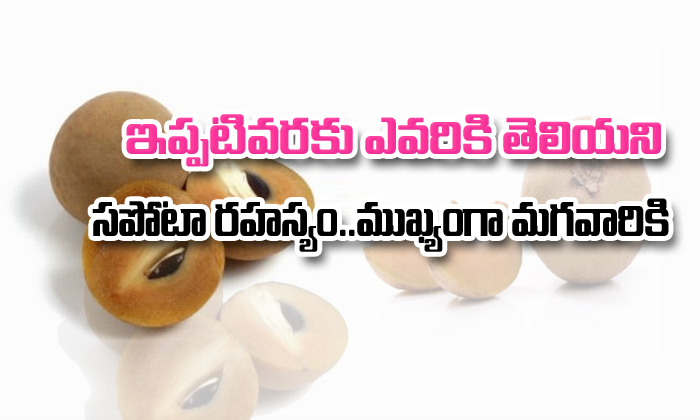 Health Benefits Of Sapota- Telugu
