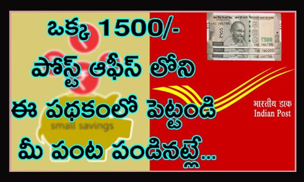Indian Post Office Best Saving Schemes-