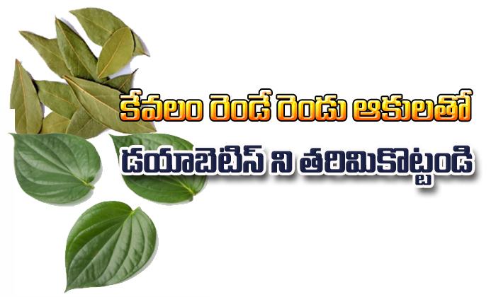 Only 2 Leaves Stop Diabetes- Telugu