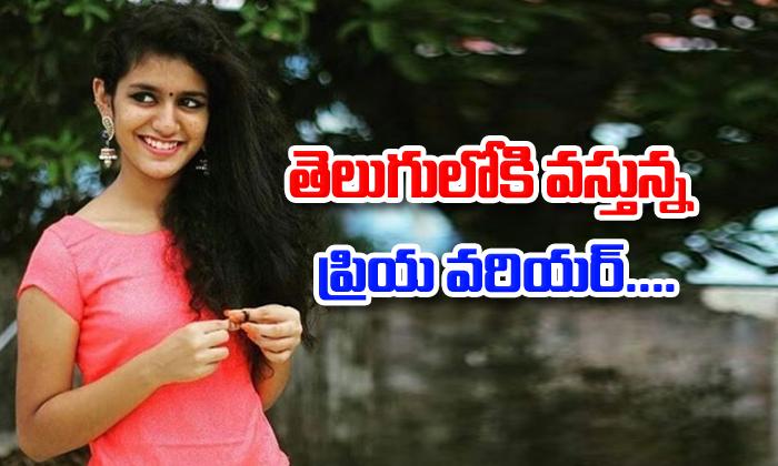 Priya Varrier In Telugu Film- Telugu