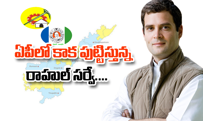Rahul gandhi survey about AP politics-
