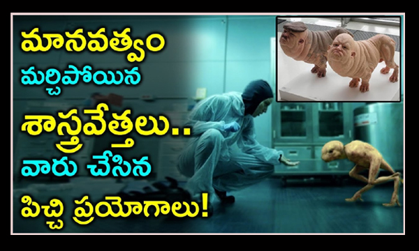 Scientists Most Strange Experiments-,