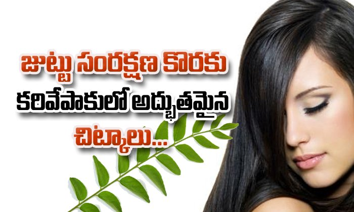 Home Remedies Using Curry Leaves For Hair Care- Telugu