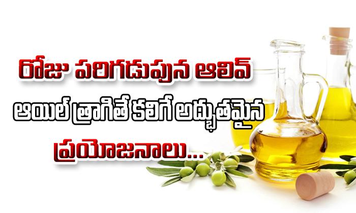 Olive Oil Health Benefits- Telugu