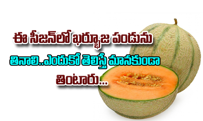 Top Health Benefits Of Muskmelon (Kharbuja)- Telugu