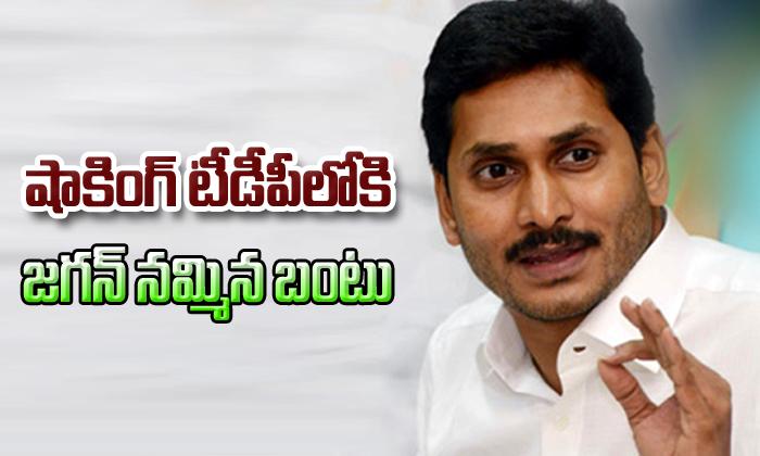 YSRCP MLA Srikanth Reddy To Join TDP- Telugu