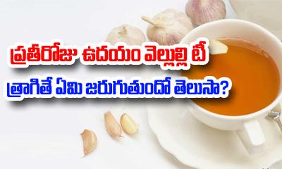Garlic tea Health Benefits-Garlic Tea Health Benefits---