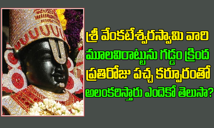 Why Camphor is Placed on Lord Venkateswara Chin?-
