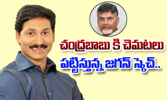 YS Jagan New Political Steps- Telugu