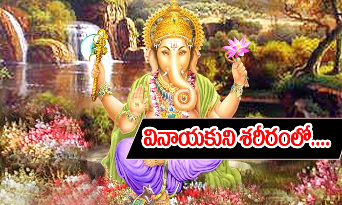 Wich Part Is Best In Lord Vinayaka--Wich Part Is Best In Lord Vinayaka-