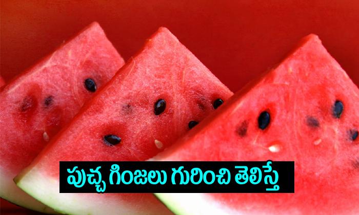 Watermelon Seeds Health Benefits--Watermelon Seeds Health Benefits-