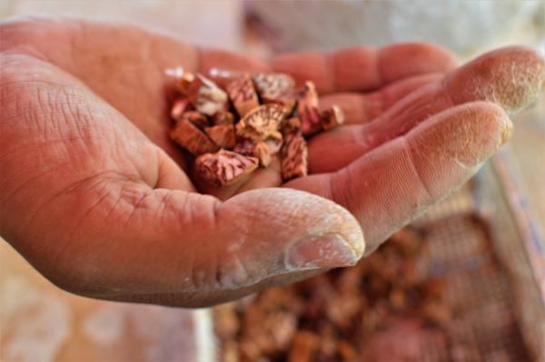 Chewing Betel Nut Side Effects-
