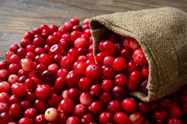 Cranberries Health Benefits-