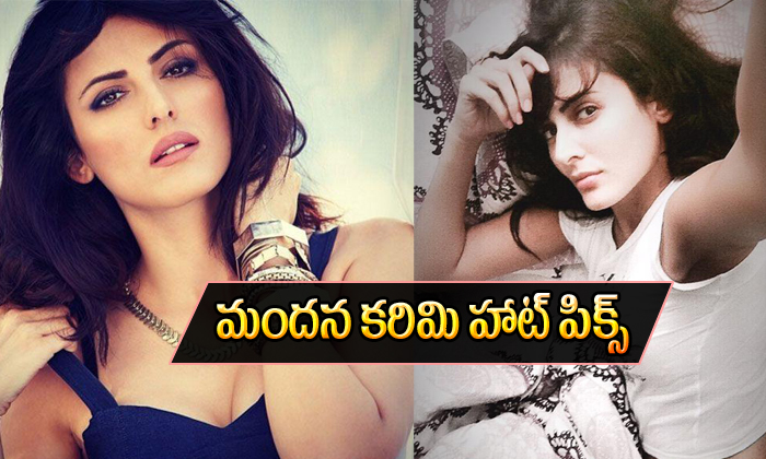 Mandana Karimi Hot Pics-Mandana Karimi Hot Pics--Mandana Karimi Spicy Stills-
