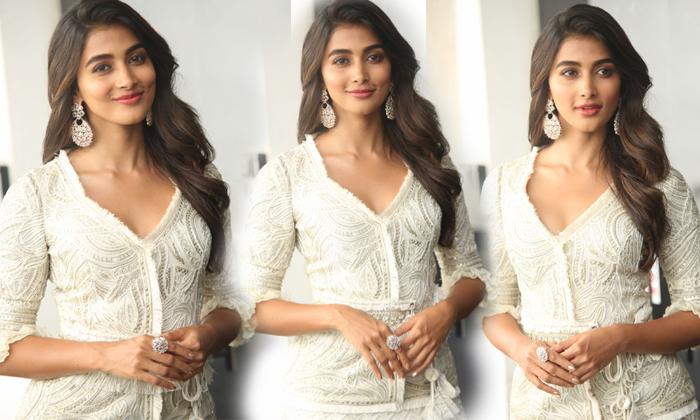 Pooja Hegde Latest Photos--Pooja Hegde Latest Hot Photos-