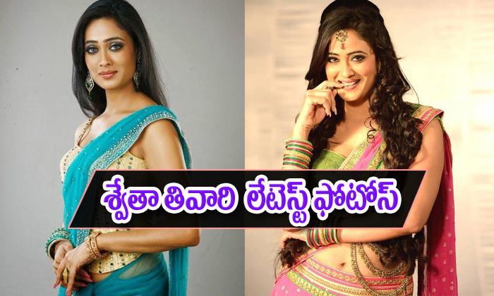 Shweta Tiwari Photo Stills-Shweta Tiwari Photo Stills--Telugu Actress Hot Photos Shweta Tiwari Photo Stills--Shweta Tiwari Photo Stills-