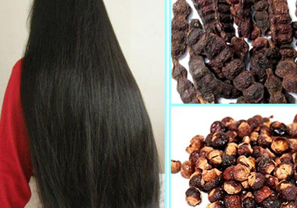 Shikakai Powder And Oils Hair Packs-