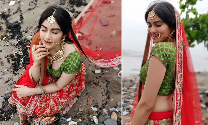 Adah Sharma New Photos--Adah Sharma New Photos-