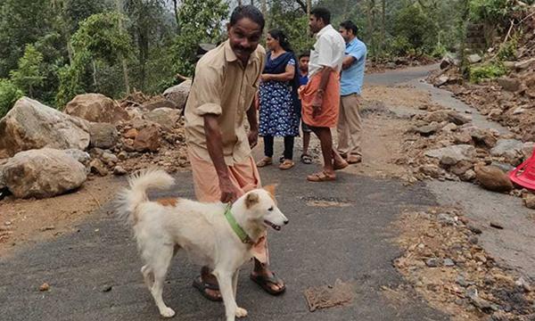 Dog Saves Kerala Family From Devastating Landslide-