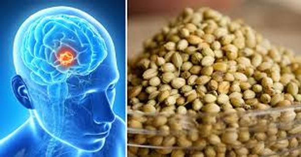 Health Benefits Of Coriander Seeds-