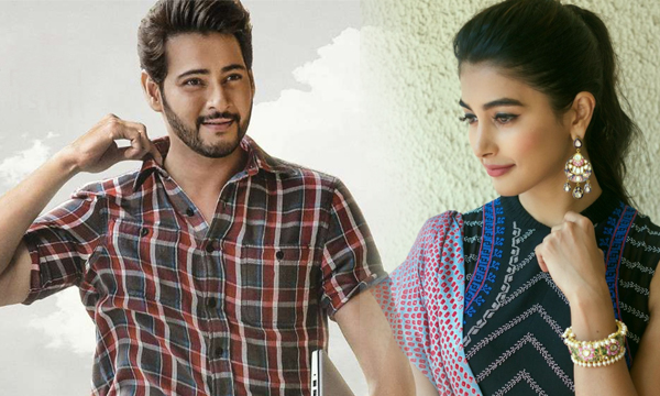 Mahesh Babu Fans Fire On Pooja Hegde-
