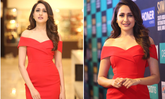 Pragya Jaiswal New Stills--Pragya Jaiswal New Stills-