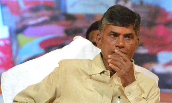 What Is Survey Effect On TDP-