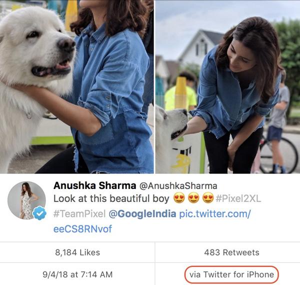 Anushka Sharma Promotes Google Pixel On Twitter Using IPhone-