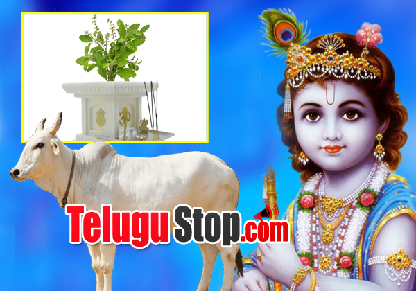 Do's And Don'ts At Krishnashtami Festival Of Lord Krishna-