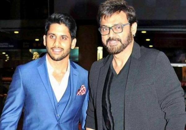 Hero Venkatesh Multi Starrer With Nagachaitanya-