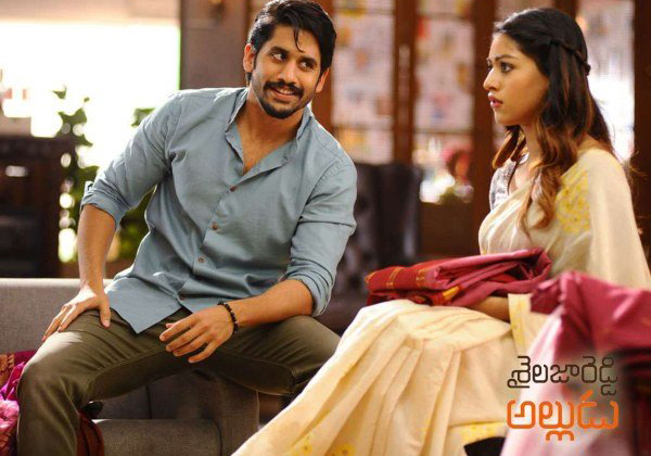 The Heart Touching Story Of Director Maruthi-Director Maruthi,Naga Chaitanya,Sailaja Reddy Allugu,Telugu Success Storys,The Heart Touching Story Of Director Maruthi