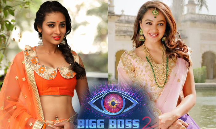 These Two Beauties Were Gained Good Luck From Bigg Boss Telugu 2--These Two Beauties Were Gained Good Luck From Bigg Boss Telugu 2-